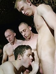 gay oral group sex pics